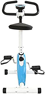 OnlineWorld Home Stress Buster Sprint Running Indoor Cycles Exercise Bike (Multicolor)