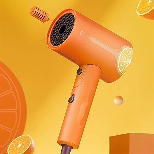 BUJIANJ Secador de Pelo Anion Secador de Pelo Professinal Seco rápido 1800W Viaje Hogar Hot Hot Secryryer (Color : 1, Size : 1)