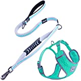 Dual Handle Dog Leash -- This dog training leash has dual handle loops. The top handle loop is padded for extra comfort handling. The control handle loop has a moveable rubber sleeve for better handling. This handle loop is deigned for close control ...
