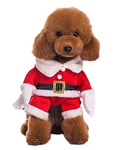 Bigood Costume Noël Chien Coton Déguisement Animaux avec Chapeau Chic Bust 42cm