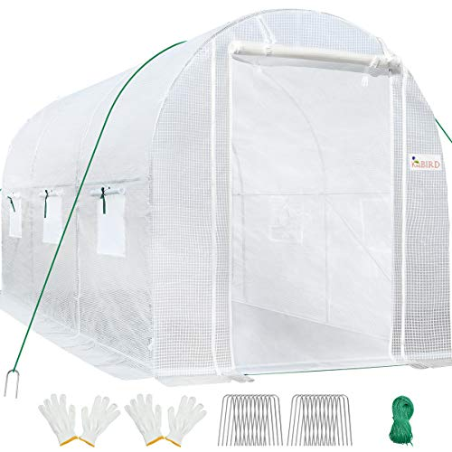 KING BIRD 10x6.6x6.6FT Upgraded Large Walk-in Greenhouse Heavy Duty Galvanized Steel Frame 2 Zipper Screen Doors 6 Screen Windows Tunnel Garden Plant Hot Green House 16 Stakes 4 Ropes 2 Gloves White