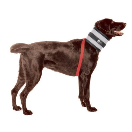 BiteNot Collar