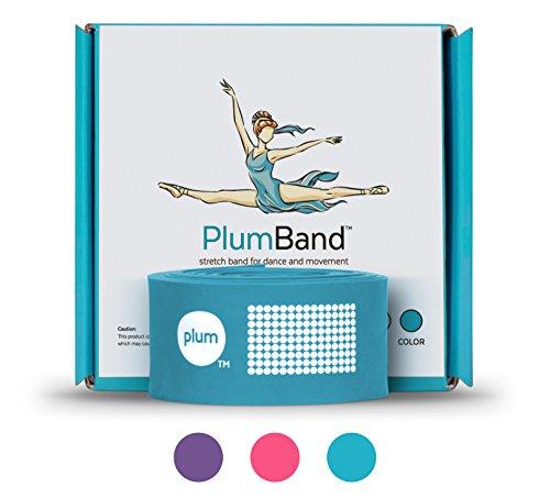 PlumBand - Banda elástica de Ballet para Danza y Gimnasia - Disponible en Varias Tallas - Manual de Instrucciones Impreso y Bolsa de Viaje incluidos (versión en Inglesa) (Azul, Regular)