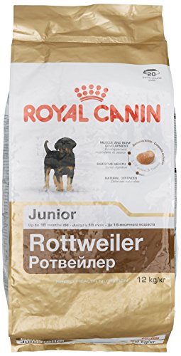 ROYAL CANIN Rottweiler 31 Junior 12 kg, 1er Pack (1 x 12 kg)