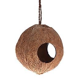 yintiod Bird Nest Dispenser Food Feeding Hiding Cave Coconut Shell Parrots Hanging House