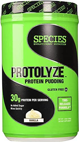 Species Nutrition Protolyze Protein Pudding, 30 Grams of Muscle Building Protein Powder, Low Calorie & Carb, Zero Sugar, Vanilla