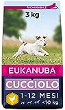 Eukanuba Cibo Secco per Cuccioli in Crescita, per Cani di Taglia Piccola, Ricco di Pollo Fresco, 3 kg