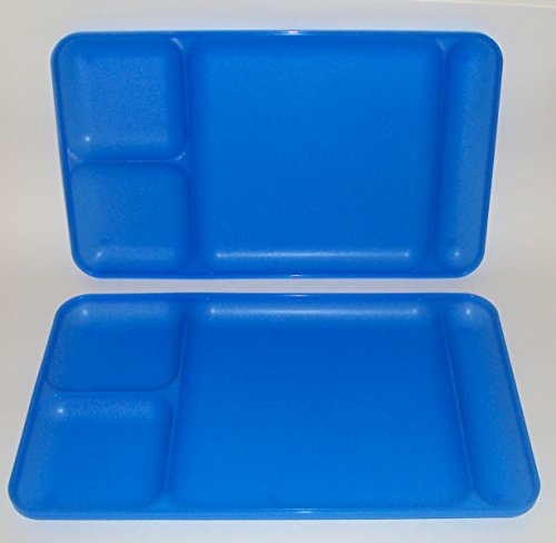 Tupperware Divided Dining TV Trays Picnic Kids Lunch Plates Sheer Blue