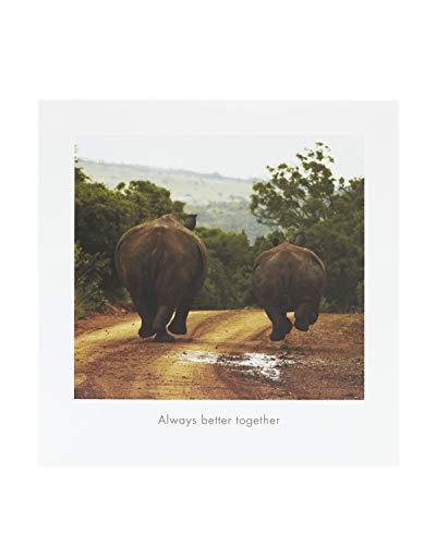 Comedy Wildlife Photography Awards – Lustige Tier-Geburtstagskarte – Ideale Geburtstagskarte für Sie, Geburtstagskarte für Ihn, Humorvolle Geburtstagskarte – Elefanten