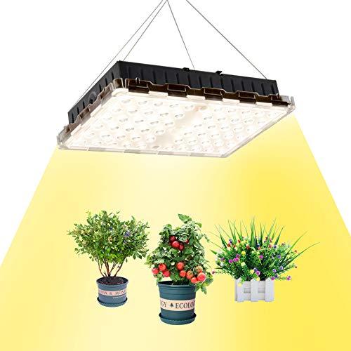 LED植物成長ランプ 植物育成ライト 全なスペクトル植物ライト 家庭菜園 野菜工場 日照不足解消 低消耗 屋内水耕栽培温室野菜植物と花種まきから収穫まで 2年保証 (300W)