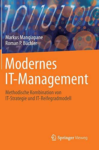 Modernes IT-Management: Methodische Kombination von IT-Strategie und IT-Reifegradmodell