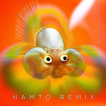No Quiero Fama (NAMTO remix)