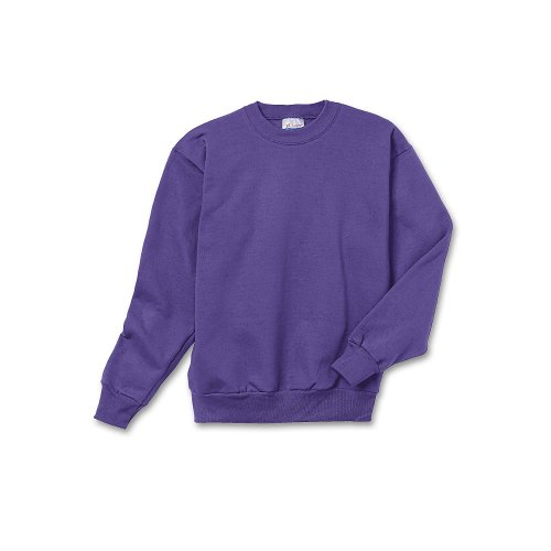 Hanes Youth ComfortBlend EcoSmart Crewneck Sweatshirt P360 Purple S