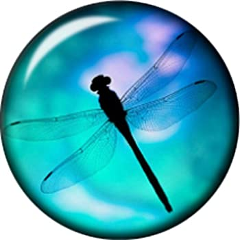Body Accentz Snap Button Domed Dragonfly Interchangable Jewelry 18mm