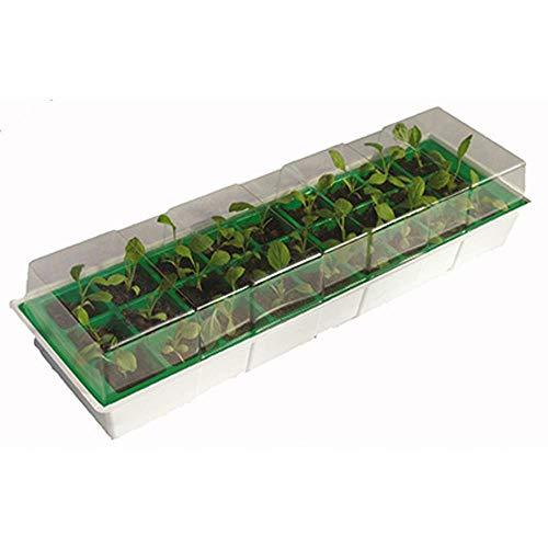 Mini serre de culture 15,5x49x10 cm