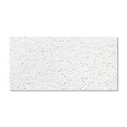 ロックウール天井板 「ダイロートン」大建工業製/TK2601-S/厚さ12mm×300mm×600mm 18枚入(1坪入)