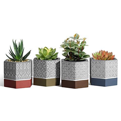 T4U Esagonale Vasi di Cemento, Set di 4 Piccola Vaso Fioriera per Piante Grasse, Giardinaggio Mini Vassetti da Interno per Piantine Cactus, Succulenta, Muschio, Orchidee