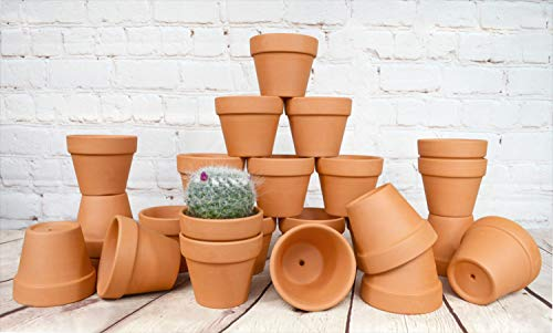 My Urban Crafts 24 Pcs Small Terra Cotta Pots 2.5 x 3 inch Mini Flower Clay Pots with Drainage Hole Ceramic Pottery Terracotta Planter for Succulents and Cactus Plants, Wedding Bridal Party Favors