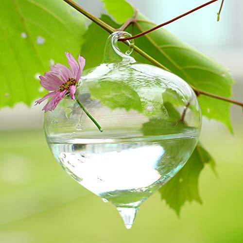 Bolange Floreros hidropónicos para plantas, maceta, florero transparente de cristal, plantas de mesa, decoración del hogar