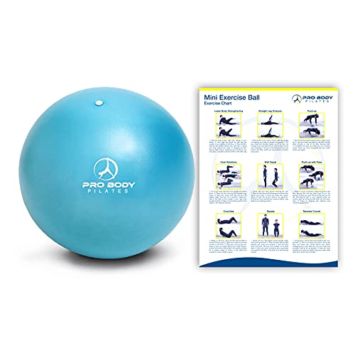 ProBody Pilates Ball Workout Ball - 9 Inch Mini Physical Therapy Ball for Stability, Barre, Yoga, Bender, Balance, Core Training, Recovery Small Exercise Ball for Between Knees (Teal)