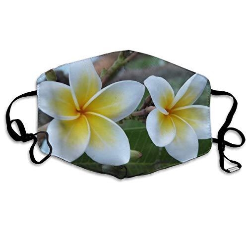 Bali Bloemen Frangipani Gepersonaliseerde maskers maskers winddicht warme maskers waterdichte maskers kunnen worden hergebruikt bij het uitgaan