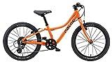 Naloo Chameleon 20 Zoll Kinderfahrrad ab 5 Jahren für Kinder, Link führt zur Produktseite bei Fahrrad XXL