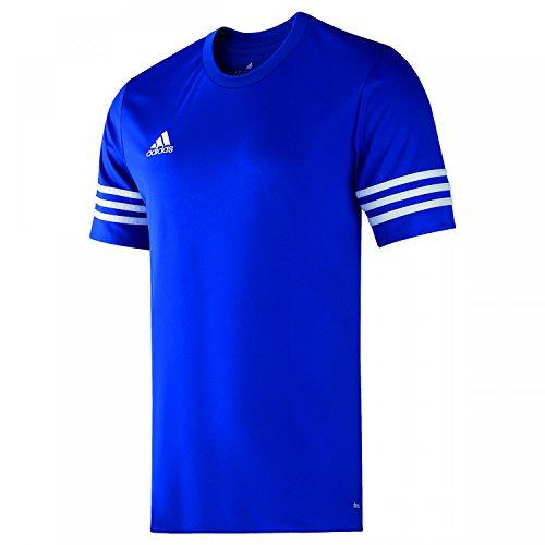 adidas Entrada 14 JSY, Camiseta para hombre, Azul (Cobalt/White), XL, F50491