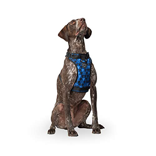 Canada Pooch | Everything Dog Harness | No-Pull Adjustable Dog Harness | Geo - Size S, S