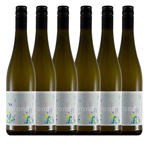 Weinhaus Brand | Bio Weißburgunder trocken (2020) | 6 x 0,75l Weißwein | weißer Burgunder vegan | 12,0% | Weisswein | Pfalz Wein | Qualitätswein | Bio-Siegel DE-ÖKO-006 | zum Verschenken…