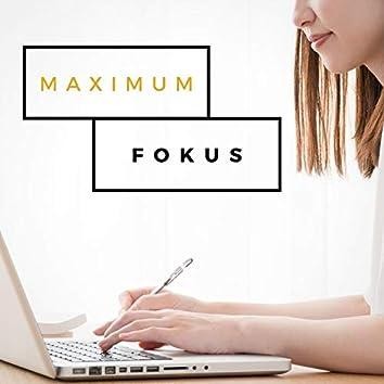 Maximum Fokus: Musik zum lernen und studieren, Konzentrationsmusik mit Alpha Wellen