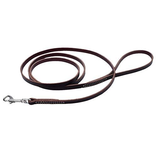 Coastal Pet - Circle T - Latigo Leather Dog Leash (3/8 x 06 Inches)
