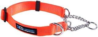 Canine Equipment Technika 1-Inch Martingale Dog Collar, Large, Orange