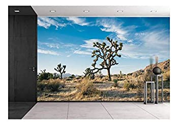 wall26 - Beautiful Desert Landscape - Removable Wall Mural | Self-Adhesive Large Wallpaper - 100x144 inches