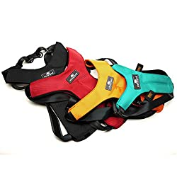 Best Safety Harness for Dogs in Cars - Sleepypod Clickit Sport Harness