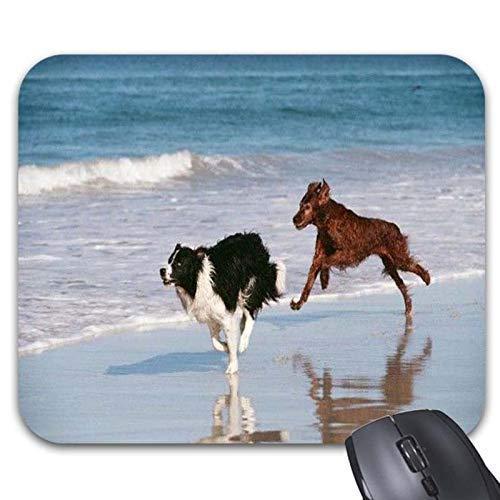 Stabiler Maus Mat Ultradünner Mousepad,Dog Border Collie Red Setter Hund Laufende Mauspads - Stilvolles Bürozubehör