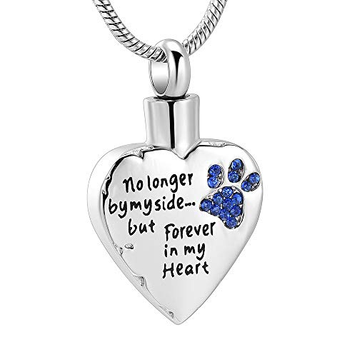 memorial jewelry No Longer by My Side,But Forever in My Heart Carved Locket Cremation Urn Necklace for Pet Dog Cats (Blue)