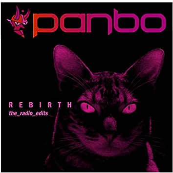 Rebirth (the radio edits)