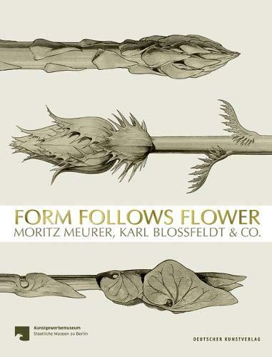 Form Follows Flower: Moritz Meurer, Karl Blossfeldt & Co.