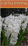 MAN: DIE MORTALE MOTOR (Afrikaans Edition)