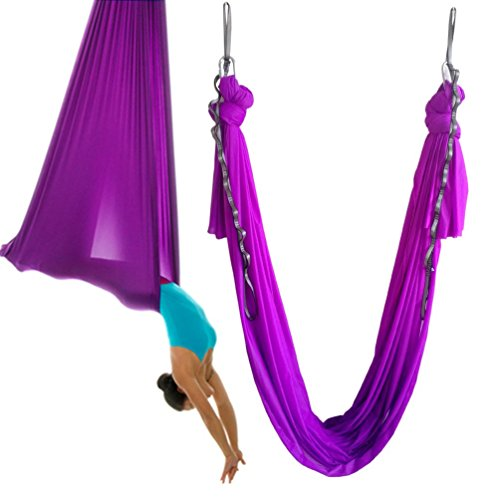 wellsem Aerial Yoga Hammock 5.5 Yards Aerial Pilates Silk Yoga Swing Set Include Carabiner,Daisy Chain, Pose Guide (Violet)