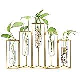SUMTREE Florero de cristal y metal, 5 rejillas, tubo de ensayo, soporte para plantas, jarrón de cristal para casa, cafetería, habitación, mesa, fiesta, boda, decoración (dorado)