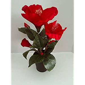 Artificial Hibiscus Red Color Silk Flowers Beautiful Little – Artificial Flowers #FWB01YN