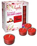 Hyoola Velas perfumadas de té – Taza transparente – Manzana Canela Tealight Velas perfumadas – 6 horas de tiempo de combustión – 15 unidades – Hecho en Europa