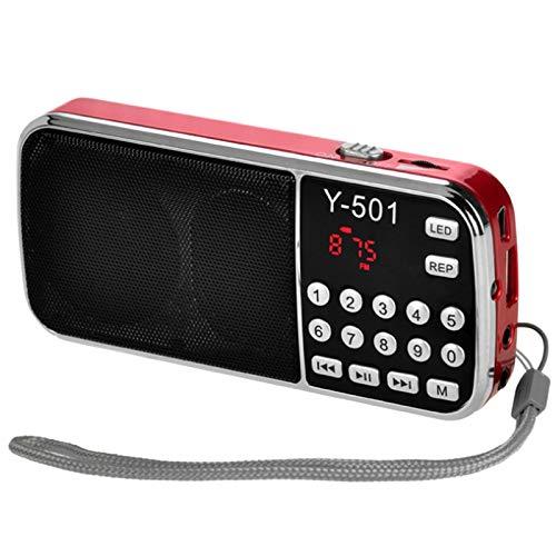 Fanuse Y-501 Digital Audio PortáTil LCD Digital FM Radio Altavoz USB Mp3 Reproductor de MúSica