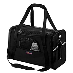 Aivituvin Cat Carrier for Medium Cats,Soft Sided Pet Carriers for Small Dogs Kitty and Puppy, Expandable Foldable Cat Travel Carrier