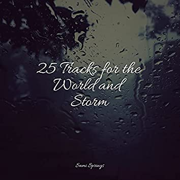 25 Tracks for the World and Storm