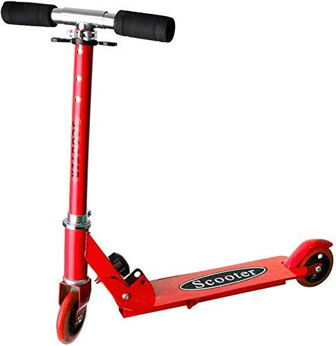 HSP Himoto Scooter für Kinder, Kickboard, Tretroller, Klappbarer Roller, Leicht verstaubar, Zweirad, Neu