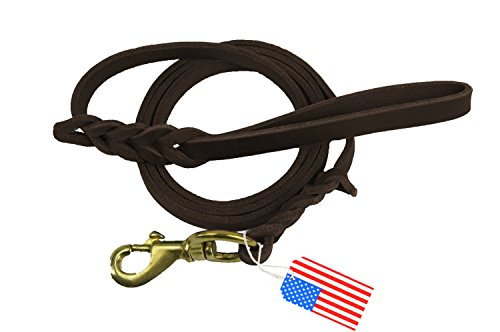 Premier 6 Foot Dog Leather Training Leash, Waist Braided Lease Leads, Made from Leather, Great Option for Large Medium Hunting Dogs or General Obedience in the Backyard