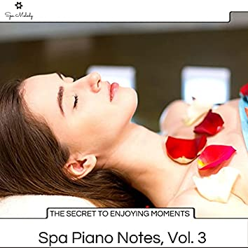 The Secret To Enjoying Moments - Spa Piano Notes, Vol. 3
