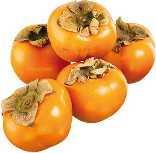 Obst & Gemüse Bio Sharonfrucht / Kaki (1 x 1 Stk)